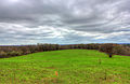 Gfp-wisconsin-ice-age-trail-trail-scenery-with-clouds.jpg