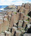 Giant's Causeway 2006 46.jpg
