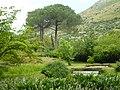 Giardino di Ninfa 136.jpg