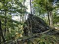 Gipfelfelsen des Neuwelter Berges - panoramio.jpg