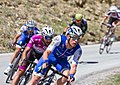 Giro d'Italia 2017, keisse gaviria (34343445883).jpg
