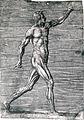 Giulio Bonasone's figures illustrating human anatomy Wellcome L0018655.jpg