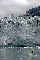 Glacier Bay National Park and Preserve GLBA1716.jpg
