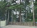 Glen Lui Hotel - geograph.org.uk - 914641.jpg