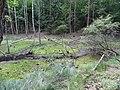 Gmina Piecki, Poland - panoramio (92).jpg