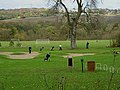 Golfers on the 13th - geograph.org.uk - 1038438.jpg