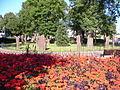 Gorsedd Gardens and stones.jpg