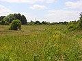 Grassland, Woodlands Park - geograph.org.uk - 875444.jpg