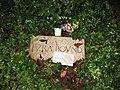 Grave of Ezra Pound.jpg