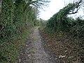 Green Lane - geograph.org.uk - 1600005.jpg