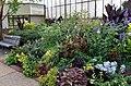 Green Spring Gardens in September (22777949862).jpg