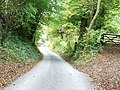 Greenway lane dropping down into Shurdington - geograph.org.uk - 1543561.jpg