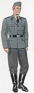 Grey SS uniform