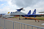 Gromov Flight Research Institute, 597, Su-30 (21256892220).jpg