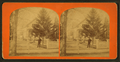 Group of people in the garden in front of their home, from Robert N. Dennis collection of stereoscopic views.png