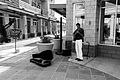 Guitarist on Main Street (Scottsdale, Arizona).jpg