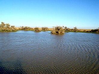 Wadi Al-Batin - Hafar Al Batin