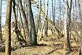 Hajnówka, Poland - panoramio (208).jpg