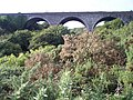 Halfway Viaduct, near Ballinhassig, Co, Cork - geograph.org.uk - 78690.jpg