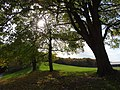 Hamm, Germany - panoramio (2370).jpg