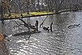Hannover Herrenhausen 2014-I by-RaBoe 075.jpg