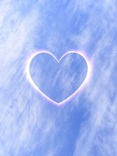 File:Heart-1.jpg