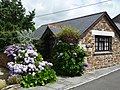 Hendra Paul Cottages, Wild flower cottage - panoramio.jpg
