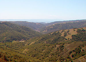 Diablo Range - The southern end of Henry W. Coe State Park, near Gilroy