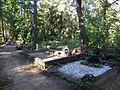 Hiiu-Rahu kalmistu 1.jpg