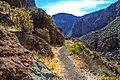 Hike down the Rio Calca just N of Chiva, Peru…cactuses (8443314275).jpg