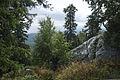 Hiking to Malinovaya (21033796128).jpg
