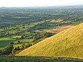 Hillside, Caer Caradoc - geograph.org.uk - 1006459.jpg