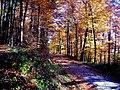 Hippie-Herbst - panoramio.jpg