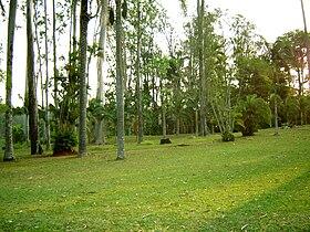O Horto Florestal, ponto turístico importante na região.