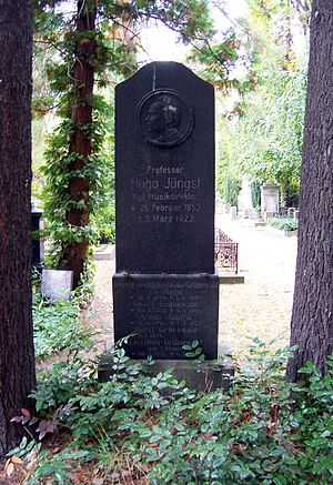 Hugo Richard Jüngst - Grave.