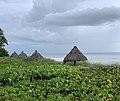 Huts on the beach.jpg