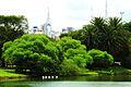 Ibirapuera 13.jpg