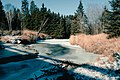Ice And Snow (205601071).jpeg