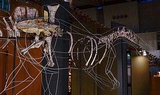 <i>Ichthyovenator</i> Genus of dinosaur