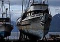 Icy Strait Point (34) (8110291713).jpg