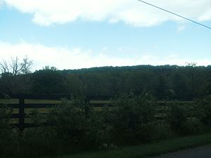Ida, Virginia - Landscape in Ida