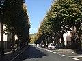 Il Viale - panoramio.jpg