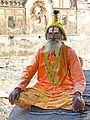 India-5896 - Flickr - archer10 (Dennis).jpg