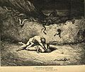 Inferno Canto 30, Gianni Schicchi, Gustave Dorè.jpg