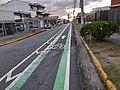 Infraestructura Ciclística en Costa Rica - Ciclo carril.jpg