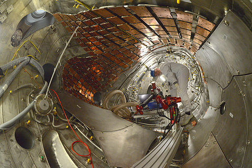 Interior of W7-X stellarator