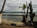 Isla Carenero, Panama - panoramio (5).jpg