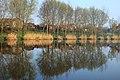 Ivacsi tópart reggeli fényben, tükröződve - Ivacs Lakeside in the morning light with reflections - panoramio.jpg