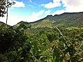 Jacarepaguá, Rio de Janeiro - State of Rio de Janeiro, Brazil - panoramio (18).jpg