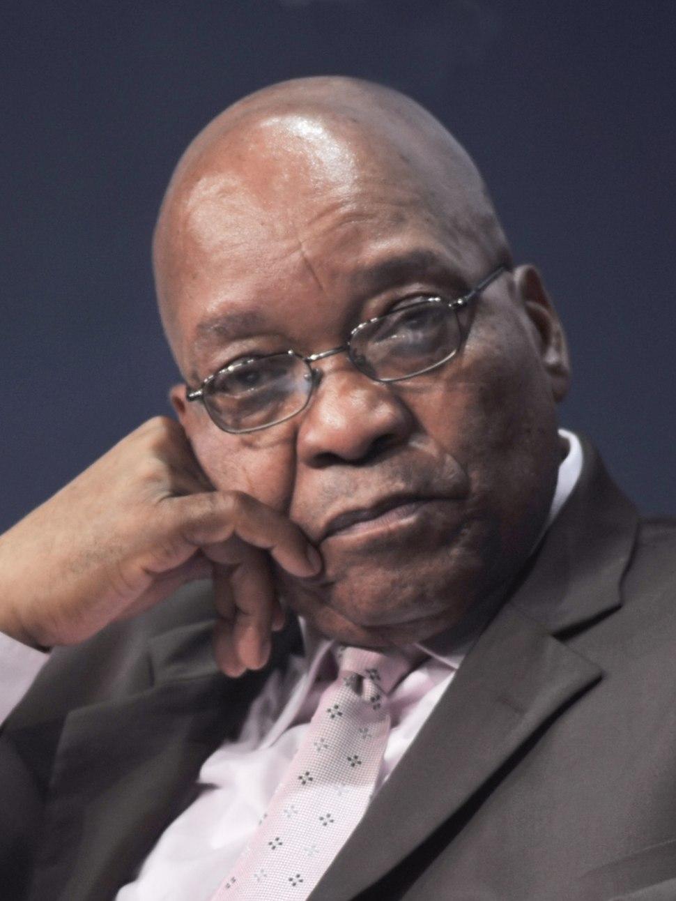 Jacob Zuma, 2009 World Economic Forum on Africa-9-2